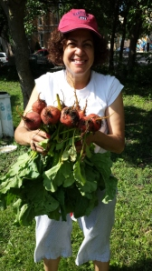 Beth holds our beet harvest