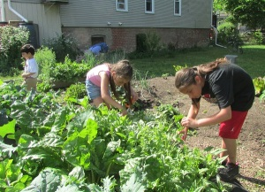 Kiara and Kiana trim back the spinach